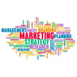 Marketing i menadžment